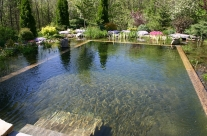 Embracing Your Future: Natural Swimming Pools